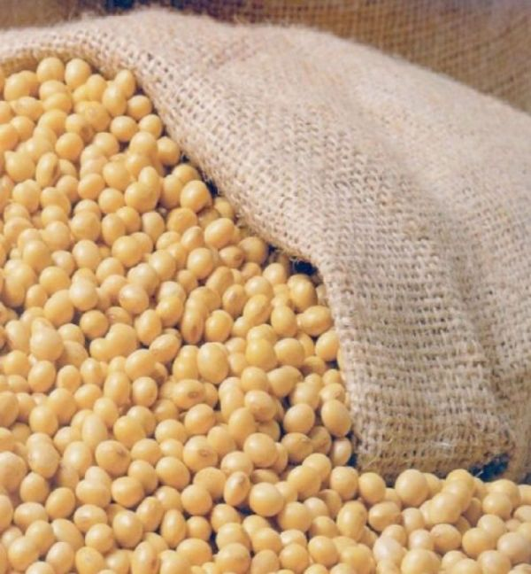 11448 - Brazil Soy bean and Meal Brazil