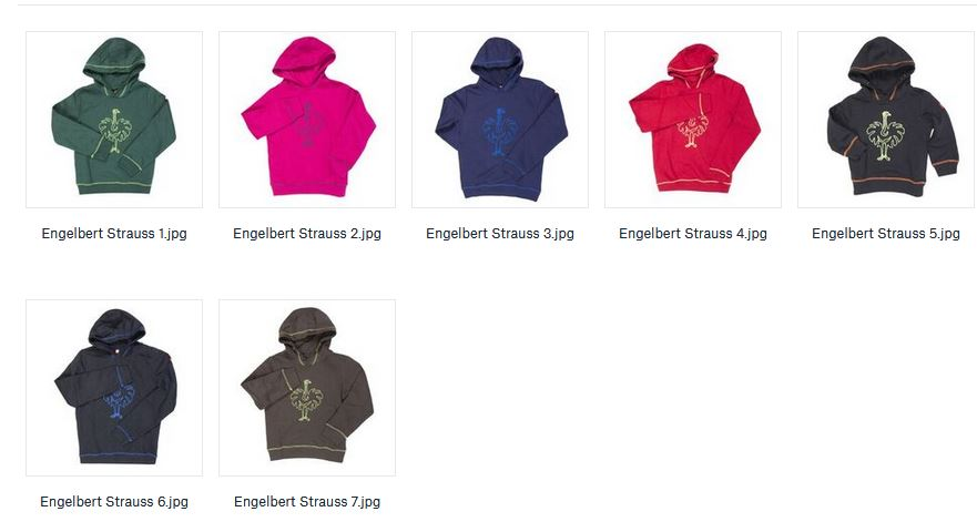 32685 - Engelbert Strauss Kids Hoodies Europe